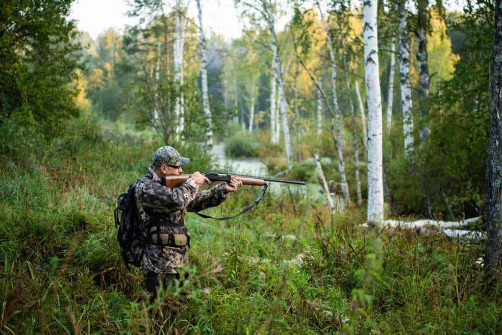 Lov i vrste lova