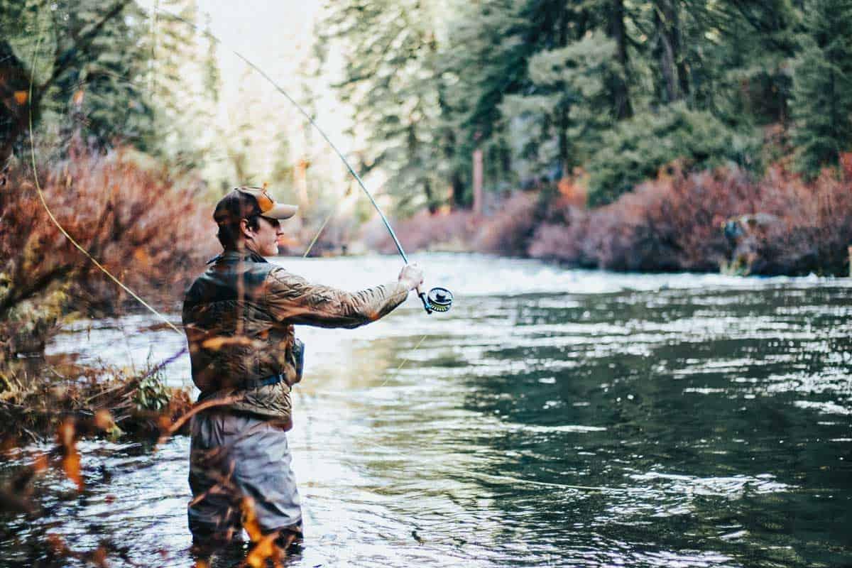 Vodič kako uloviti ribu