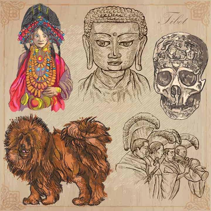 Tibetanski Mastif Povijest