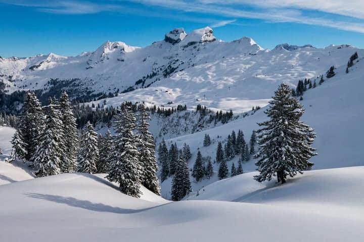 Prednosti skijanja