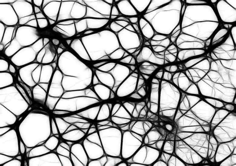 neurotransmiter adenozin