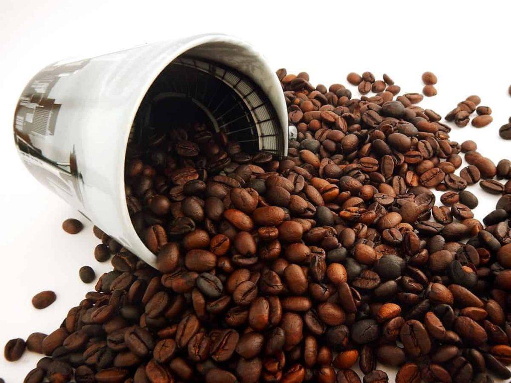 zdravstvene prednosti kafe