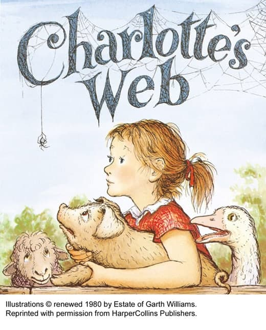 Charlotteina mreža
